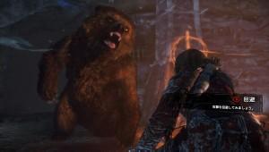 進撃の熊さん